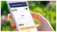 Cara Mendapatkan EFIN Pajak Secara Online